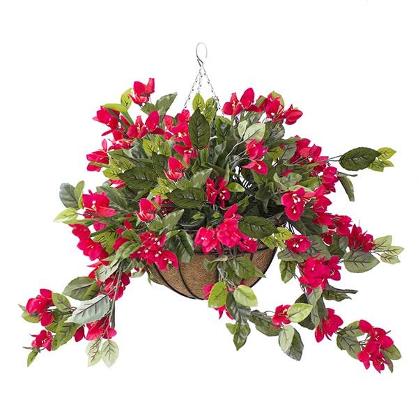 Jardinière bougainvilliers rouges