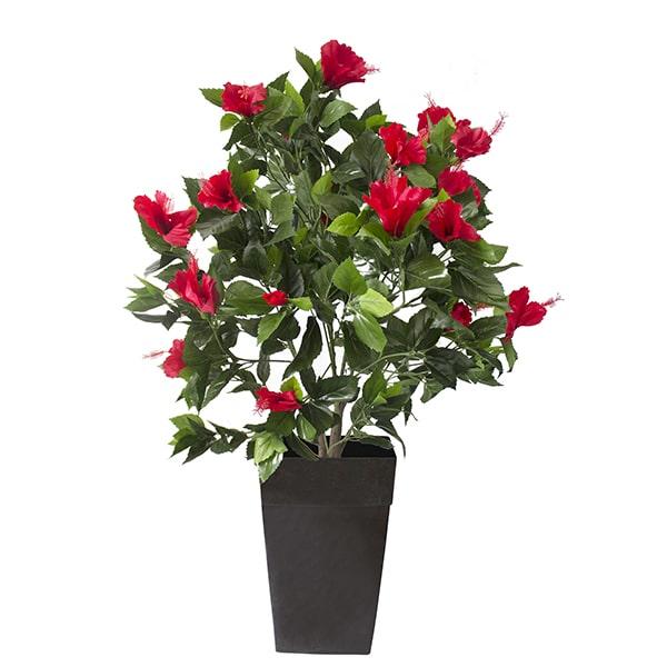Plant-hibiscus-rouge-decoration-exterieur-fausse_plante
