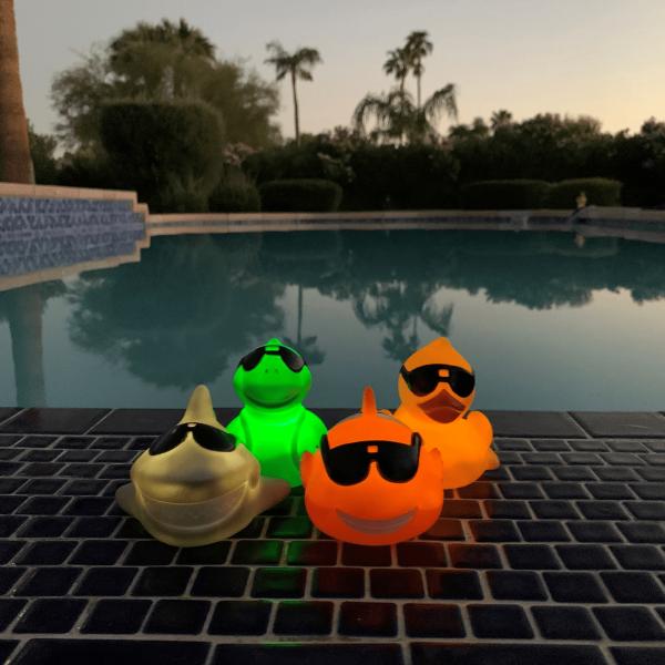 animal-flottant-lumiere-del-accessoire-jeu-piscine