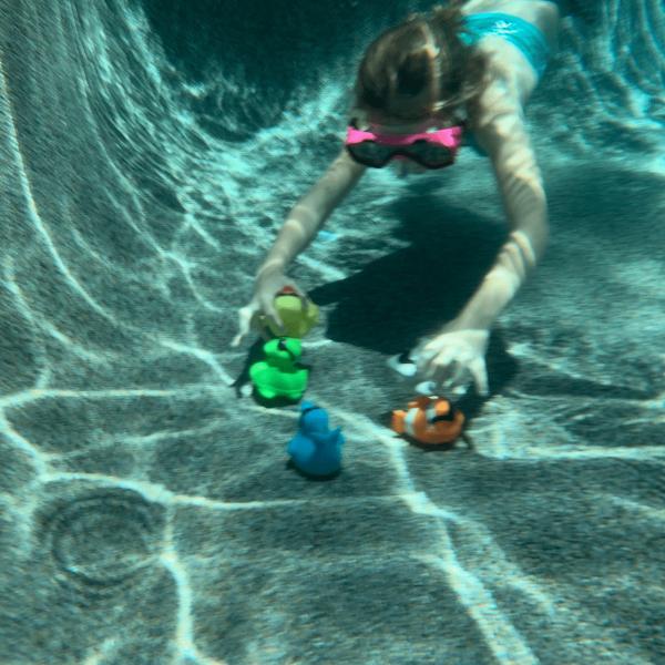 dive_pals-animal-jeu-piscine